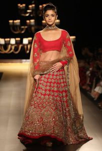 Every Day Wear Lehenga
