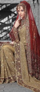 Indian Wedding Sarees – Choose the Best for your Dreamful Day